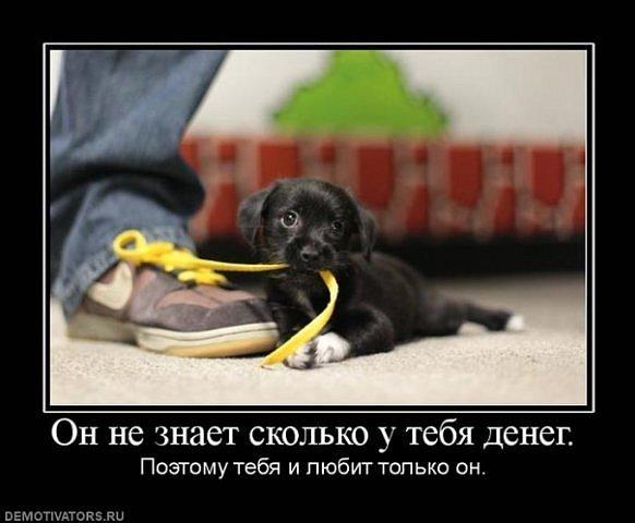 http://cs9491.vkontakte.ru/u56810494/114473754/x_4ab0cabe.jpg