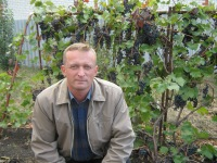 Сергей Соломахин, 8 мая 1989, Бутурлиновка, id103523731