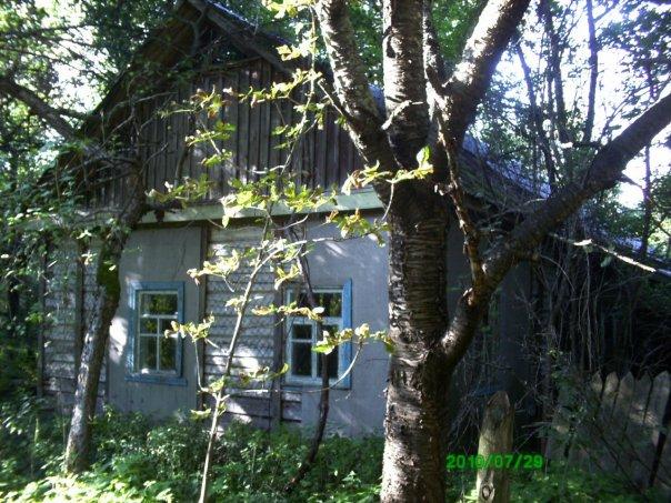 cs9498.vkontakte.ru/u5239287/114787367/x_16b88c11.jpg