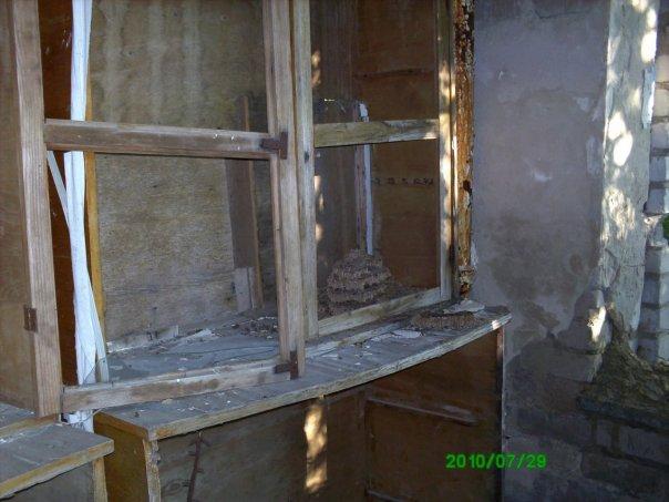 cs9498.vkontakte.ru/u5239287/114787367/x_c1a7c49f.jpg