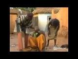 Африканское лечение головных болей по методики доктора Егорова