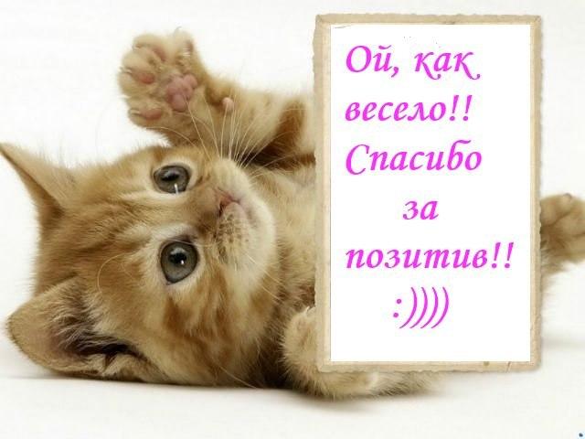 http://cs9507.vk.me/v9507065/f17/OhAB7taawg0.jpg