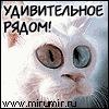 Коля Бартенев, 30 апреля 1992, Могилев, id149615706