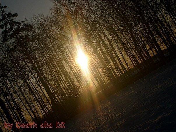 http://cs9511.vkontakte.ru/u22140585/104698211/x_f6a381a3.jpg