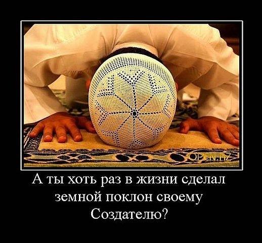 http://cs9514.vkontakte.ru/u144810498/147675828/x_a25ecfd4.jpg