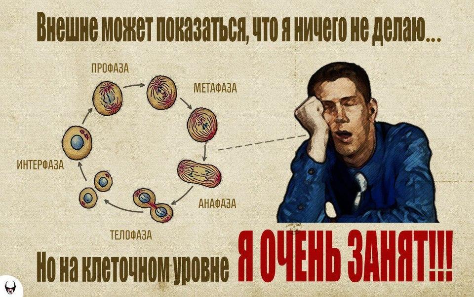 http://cs9514.vk.me/v9514550/399a/ufUuXkHVmOw.jpg