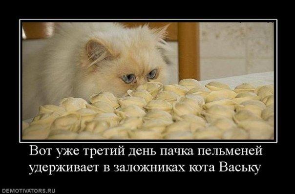 http://cs9515.vkontakte.ru/u13933596/107998061/x_2516e383.jpg
