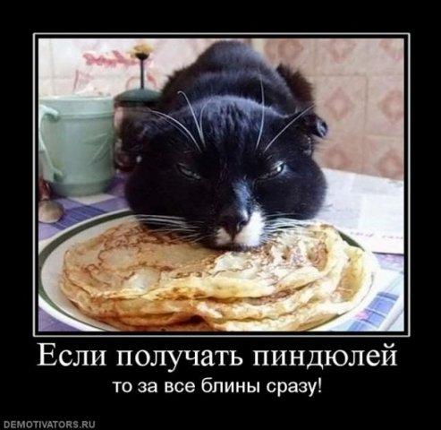 http://cs9515.vkontakte.ru/u13933596/107998061/x_9457ab41.jpg