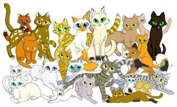 Коты-воители грозовое племя список котов