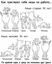 Женя Приходько, 14 сентября , Элиста, id110258628