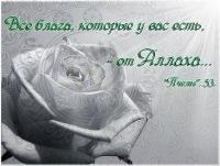 Наргиза Пулатова, 31 октября , Джанкой, id108825185