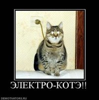 Вера Сотникова, 12 июля 1990, Санкт-Петербург, id78547873