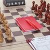 Шахматы +