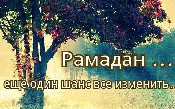 http://cs9530.vk.me/v9530758/e10/l44I0VVxf3c.jpg