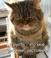 Виталий Шелкунов, 9 декабря 1977, Витебск, id217102800