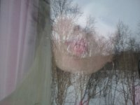 Baby Kiss, 21 сентября , Петропавловск-Камчатский, id55837070