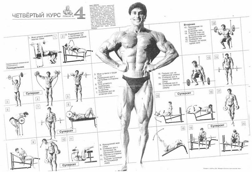 Комплекс упражнений на все мышцы в картинках