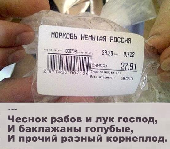 ДАЧНЫЙ СЕЗОН - Страница 4 X_a06e423d