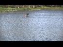 Волчье озеро Ч.2