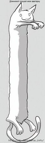 Как сделать картинку длиннее