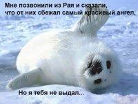 Ольга Морева, 12 августа , Мурманск, id80489199