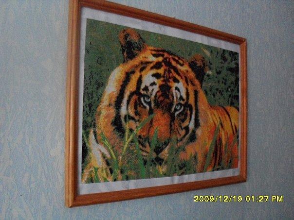 http://cs9541.vkontakte.ru/u44228402/75411098/x_15a22990.jpg