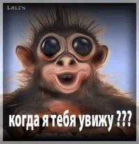 Зак ((((((((джойн))))))))))))), 10 апреля 1999, Запорожье, id108337027