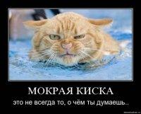 Артур Араджян, Красный Луч, id68282806
