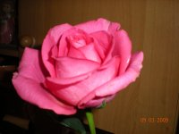Лариса Какегова, 10 февраля , Санкт-Петербург, id78547891