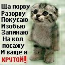 Рафаэль Габдуллин, 3 сентября 1998, Уфа, id105595707