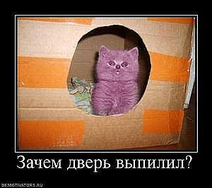 http://cs9553.vkontakte.ru/u2497541/101192113/x_2627db03.jpg