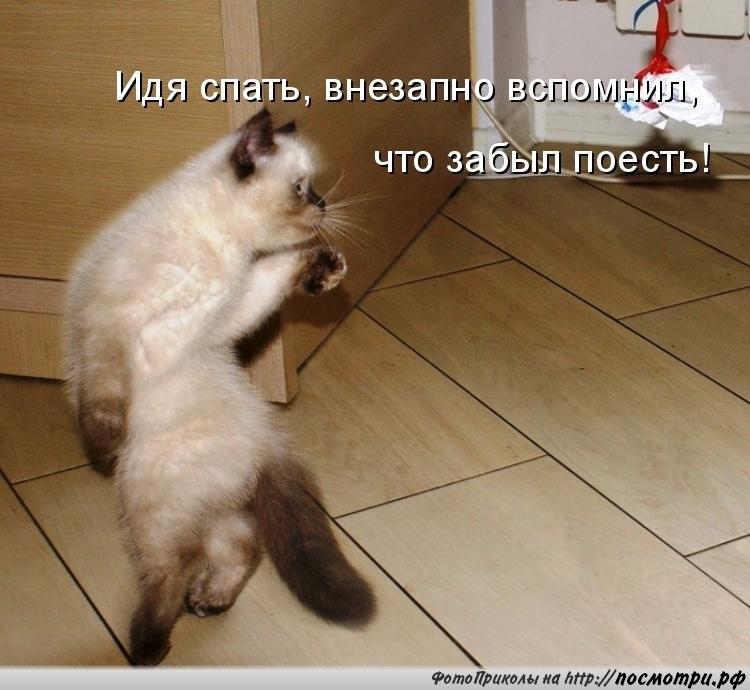 http://cs9554.vk.me/u56464427/151993001/y_2131c682.jpg