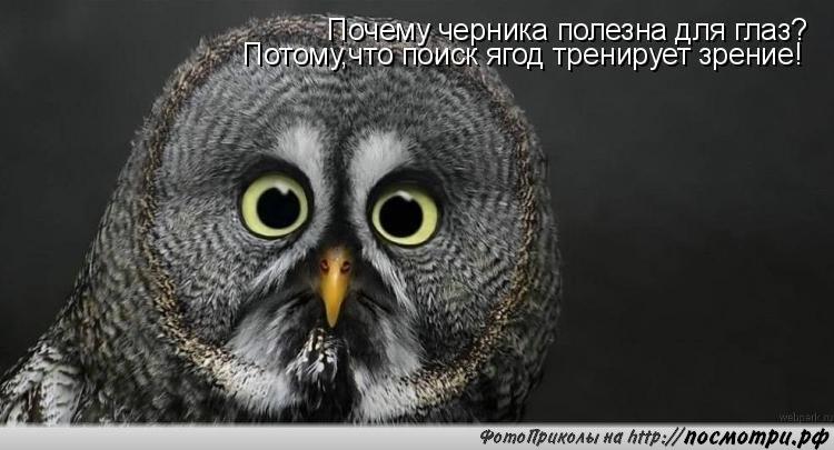 https://pp.vk.me/c9554/u56464427/151993001/y_d2ccbaab.jpg