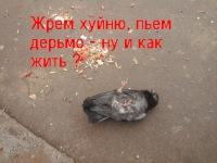 Алексей Потехин, 7 мая 1987, Королев, id48652622