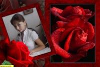 Анна Шульга, 4 сентября 1999, Ростов-на-Дону, id162869534