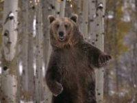 Кирилл !!!, 1 марта , Санкт-Петербург, id76466911
