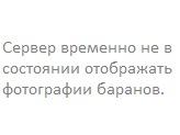 Антон Анисимов