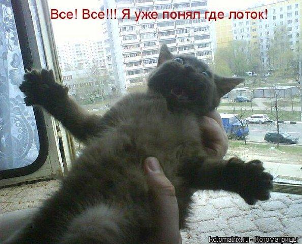 http://cs9569.vkontakte.ru/u43692401/101261245/x_88df4351.jpg