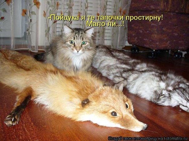http://cs9569.vkontakte.ru/u43692401/101261245/x_bad4e662.jpg