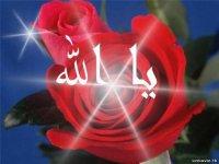otabek abd Allaha, Араван