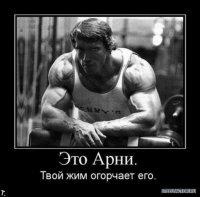 Никита Строгачев, 16 мая , Санкт-Петербург, id58998748