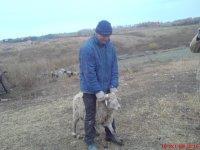 Дмитрий Литвинов, 21 ноября 1981, Курган, id59923854