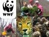 Посади лес для леопарда!