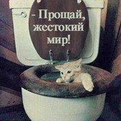 Юля Васькова, 24 июля 1997, Чапаевск, id93058426