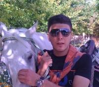 Omar Mouhamed