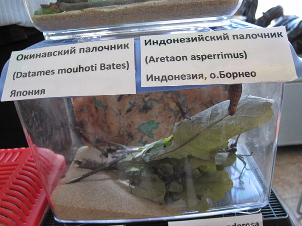 http://cs9599.vkontakte.ru/u1584628/104173831/x_e3e2edbd.jpg