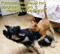 Митя Басистов, 4 октября 1999, Смоленск, id151819343