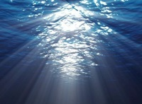 Арт-печать:Подводный мир 16 фотографий ВКонтакте.