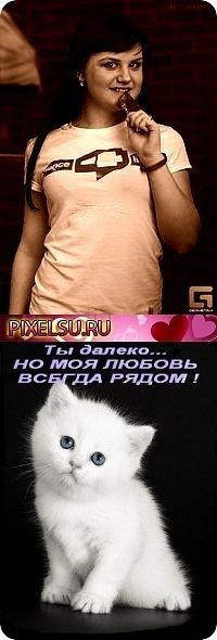 Ильдар Плотников, 19 августа 1991, Йошкар-Ола, id107654038