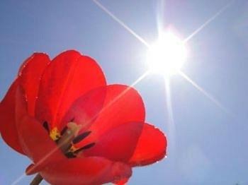 Восстановление зрения при помощи Солнца
